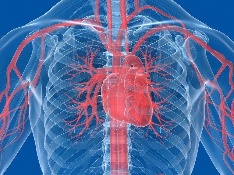 Лечение сердца и сосудов