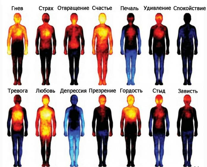 Эмоции и температура тела